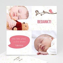 Bedankkaartje geboorte dochter - Vogeltje Meisje - 5
