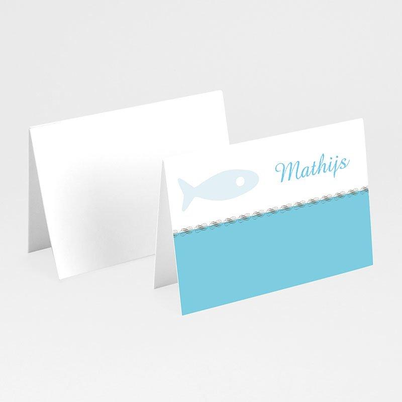Plaatskaartjes doopviering Christelijk visje