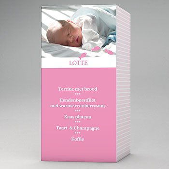 Menukaart doopviering - Maritiem, roze - 1