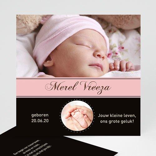 Geboortekaartje meisje Meiske erbij