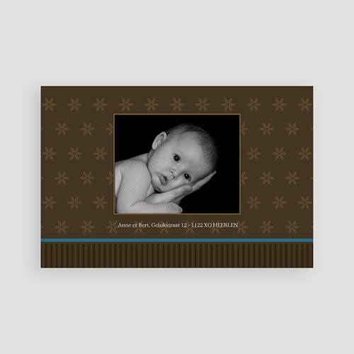 Geboortekaartje jongen - Prinselijk geschenk 10229 thumb