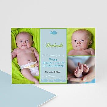 Bedankkaartje geboorte zoon - Lente-oogst, blauw - 1