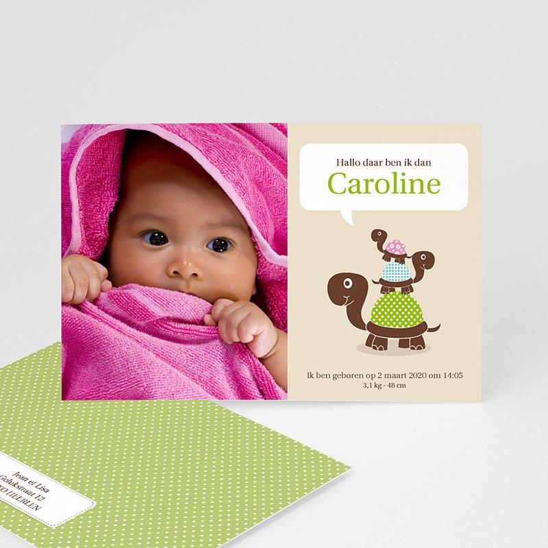 Geboortekaartje meisje - Schildpadden 10677 thumb