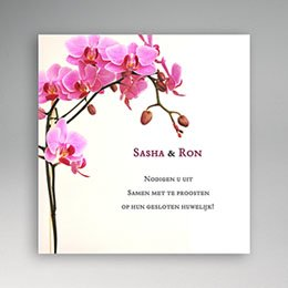 Persoonlijke insteekkaarten Roze orchidee
