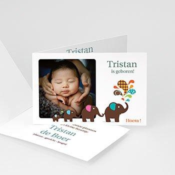 Geboortekaartje jongen - Olifanten optocht - 1