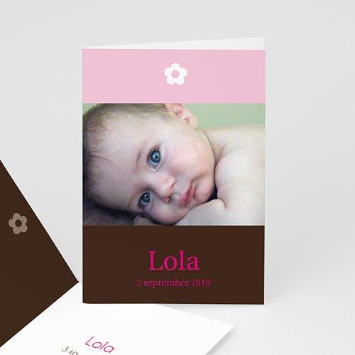 Geboortekaartje meisje - Ons dochtertje 10960 thumb