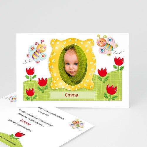 Geboortekaartje meisje - Vlinderkader 11048 thumb