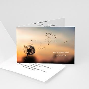 Universele rouwkaarten - Ondergaande zon bij boom - 1