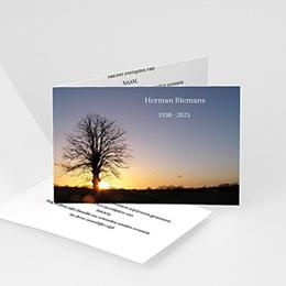 Universele rouwkaarten Ondergaande zon bij boom