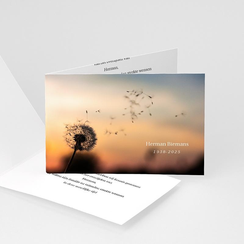 Universele Bedankkaartjes Overlijden Ondergaande zon bij boom