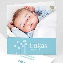 Aankondiging Geboorte Blauwe klavertjes vier