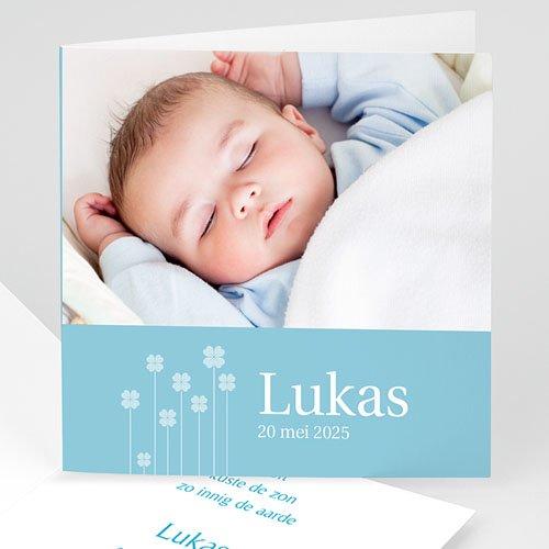 Geboortekaartjes Jongen Blauwe klavertjes vier
