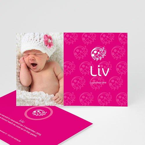 Geboortekaartjes Meisje Roze lieveheersbeestje