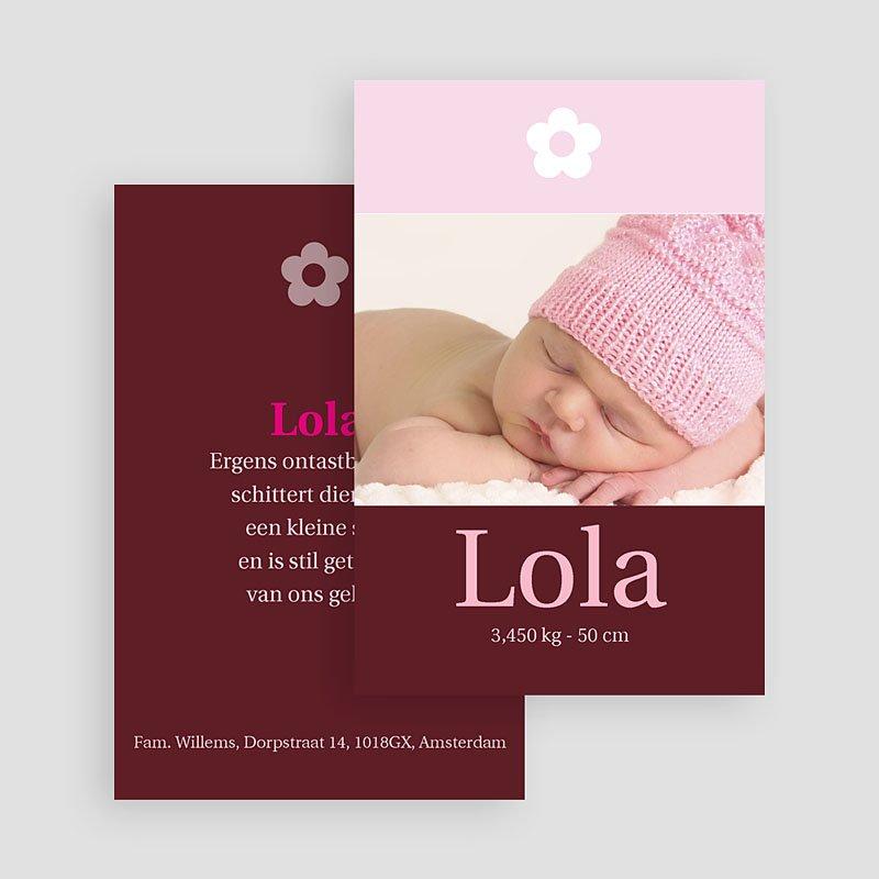 Geboortekaartjes Meisje Ons dochtertje gratuit