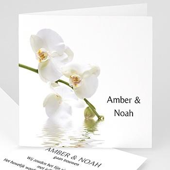 Trouwkaarten - Witte orchidee - 1