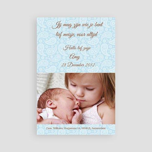 Geboortekaartjes Jongen Fel blauw pas cher