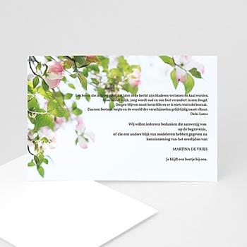 Universele rouwkaarten - Eeuwige rozen - 1
