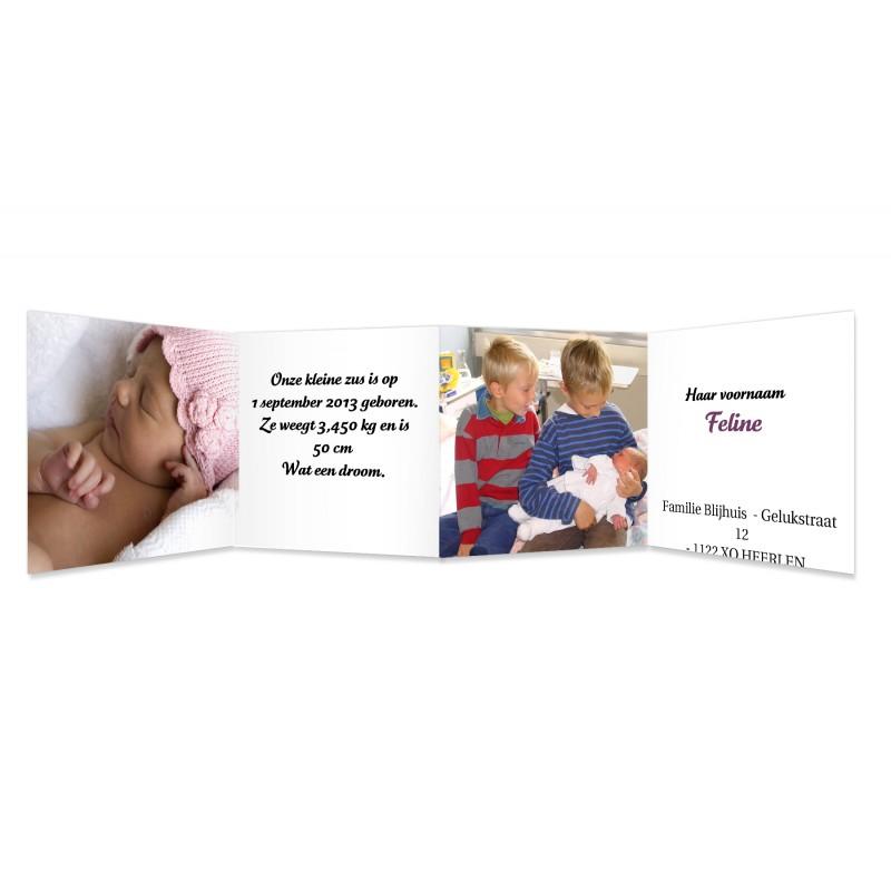 Geboortekaartje meisje - Liefdevol vierluik, rood-roze 11549 thumb