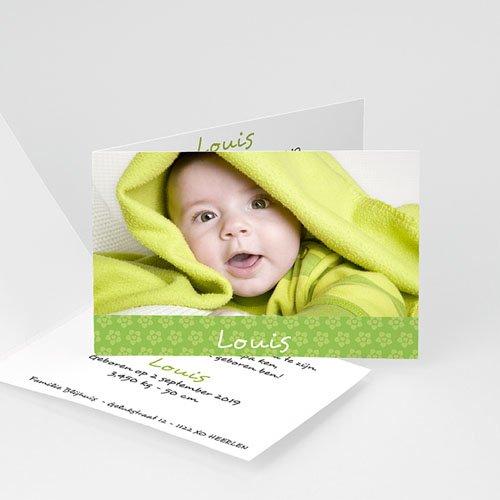 Geboortekaartje jongen - Wat ik wilde laten weten, groen 11556 thumb
