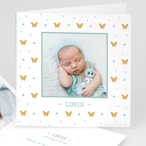 Geboortekaartje jongen - Overal vlindertjes 11680