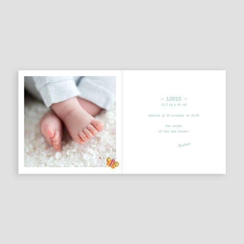 Geboortekaartje jongen - Overal vlindertjes 11681 preview