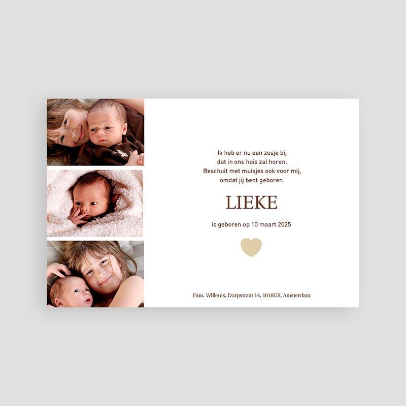 Geboortekaartje meisje - Even voorstellen 11689 thumb