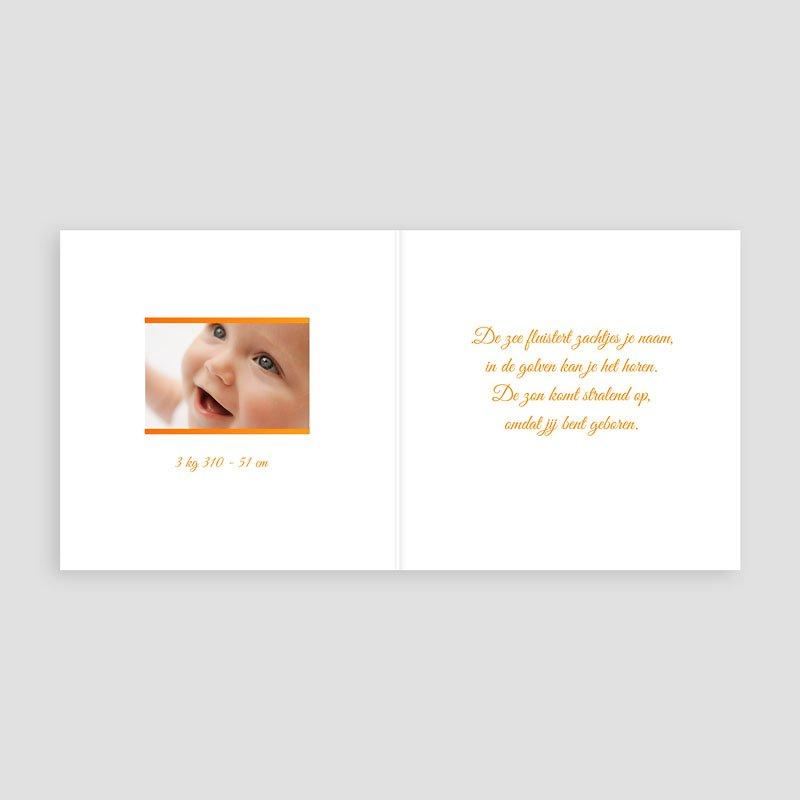 Geboortekaartje meisje - Ik hou ook van Oranje 11728 thumb