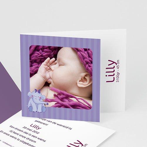 Geboortekaartje meisje Olifantje met strik en bloem