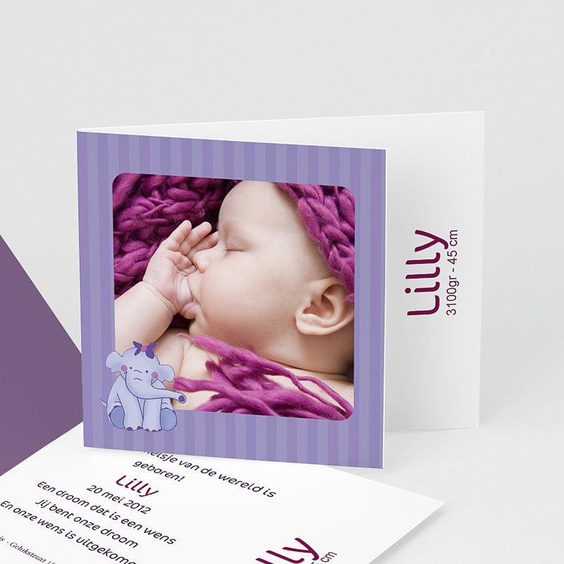 Geboortekaartje meisje - Olifantje met strik en bloem 11933 thumb