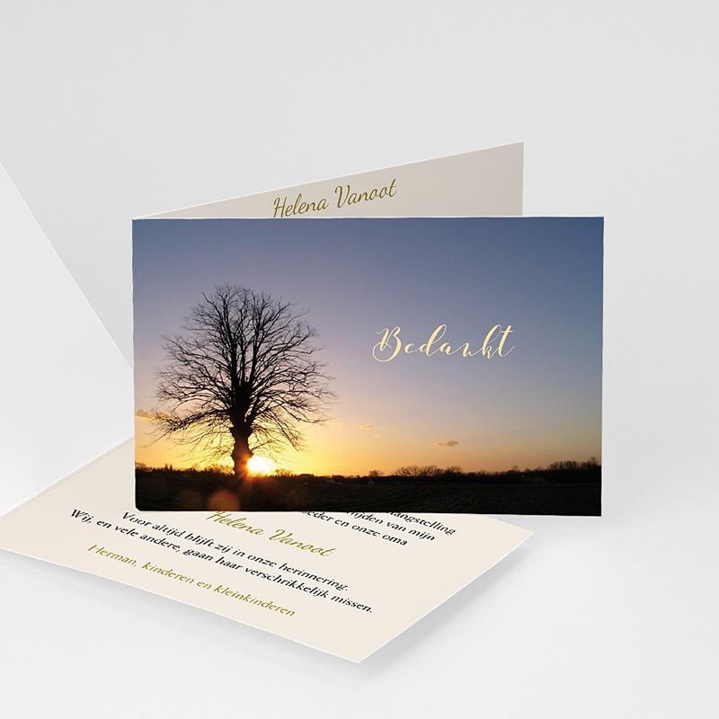 Universele rouwkaarten - Ondergaande zon bij boom 11943 thumb