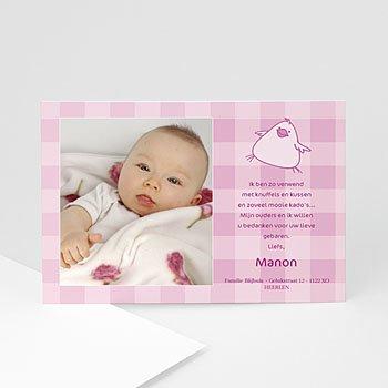 Bedankkaartje geboorte dochter - Nieuw in het nestje - 1