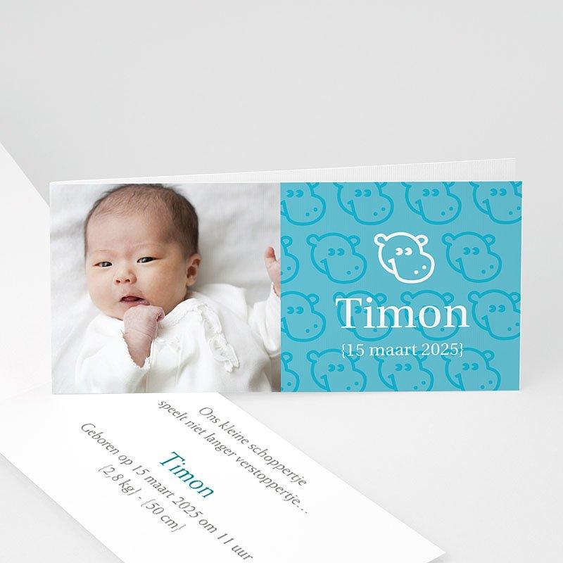 Geboortekaartje jongen - Nijlpaardjes boy 12362 thumb