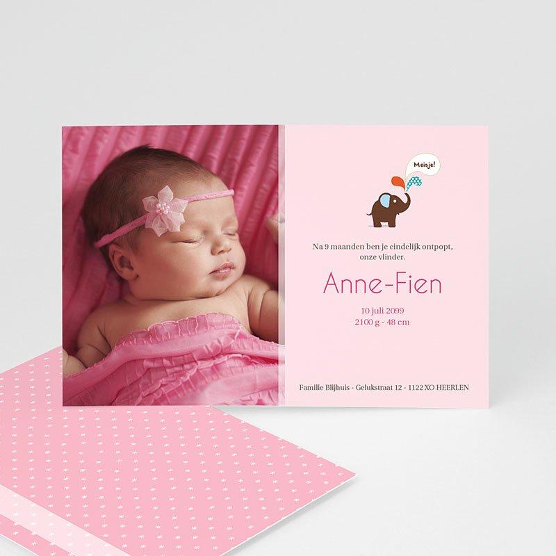 Geboortekaartje meisje - Pink Lady 12449 thumb