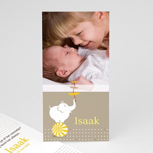 Geboortekaartjes met Olifant Design circus