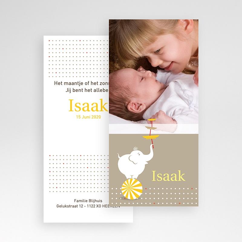 Geboortekaartjes met Olifant Design circus pas cher
