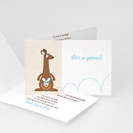 Aankondiging Geboorte Kangaroe jongen