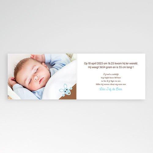 Geboortekaartjes Jongen Kangoeroe jongen pas cher