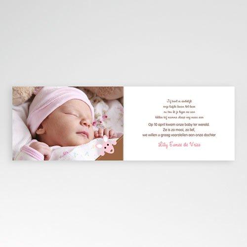 Geboortekaartje meisje - Kangoeroe  12637 thumb