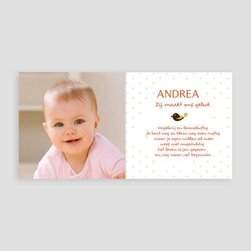 Geboortekaartje meisje - Vrije geest 12910 thumb