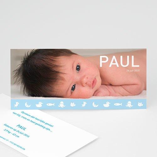Geboortekaartje jongen - Geboorte 1868 13506 thumb