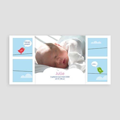 Geboortekaartje meisje - geboortekaartje 4111 13635 thumb
