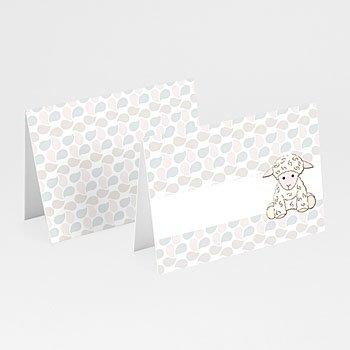 Plaatskaartjes doopviering - Doopsel 2128 - 1