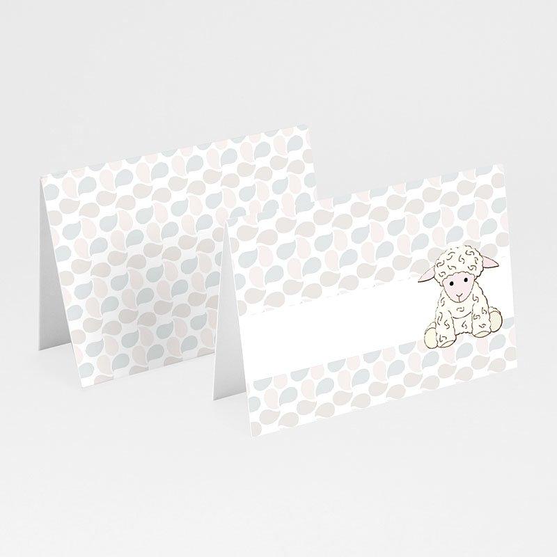Plaatskaartjes doopviering - Doopsel 2128 13653 thumb