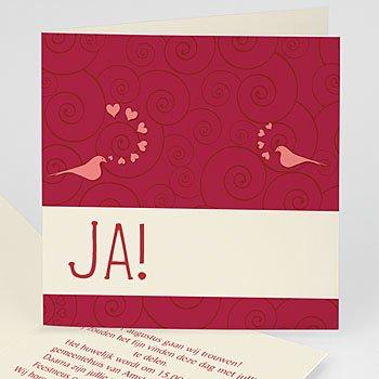 Trouwkaartjes zonder foto - Uitnodiging Huwelijk 2094 - 1