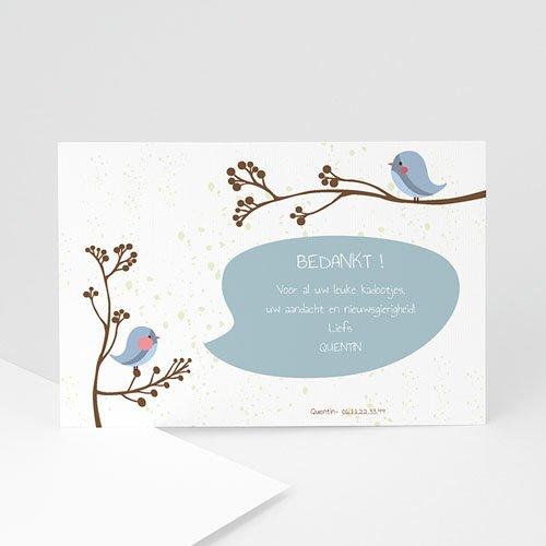 Genoeg Bedankkaartje geboorte zoon - Fluitende vogel jongen | Zokaartjes.com &OT48