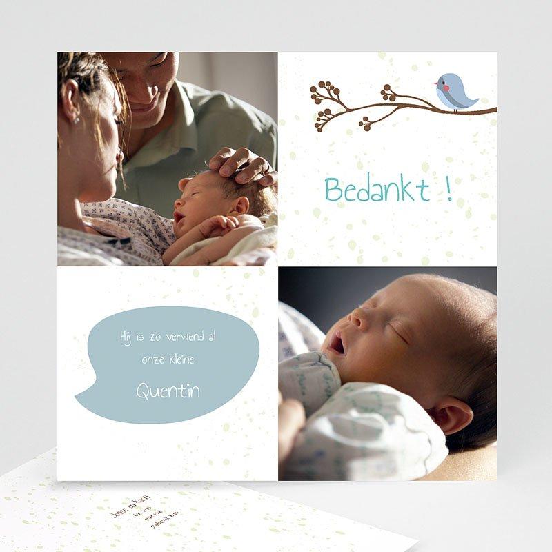 Bedankkaartje geboorte zoon - Fluitende vogel jongen 14247 thumb