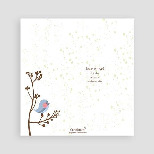 Bedankkaartje geboorte zoon - Fluitende vogel jongen 14248 preview
