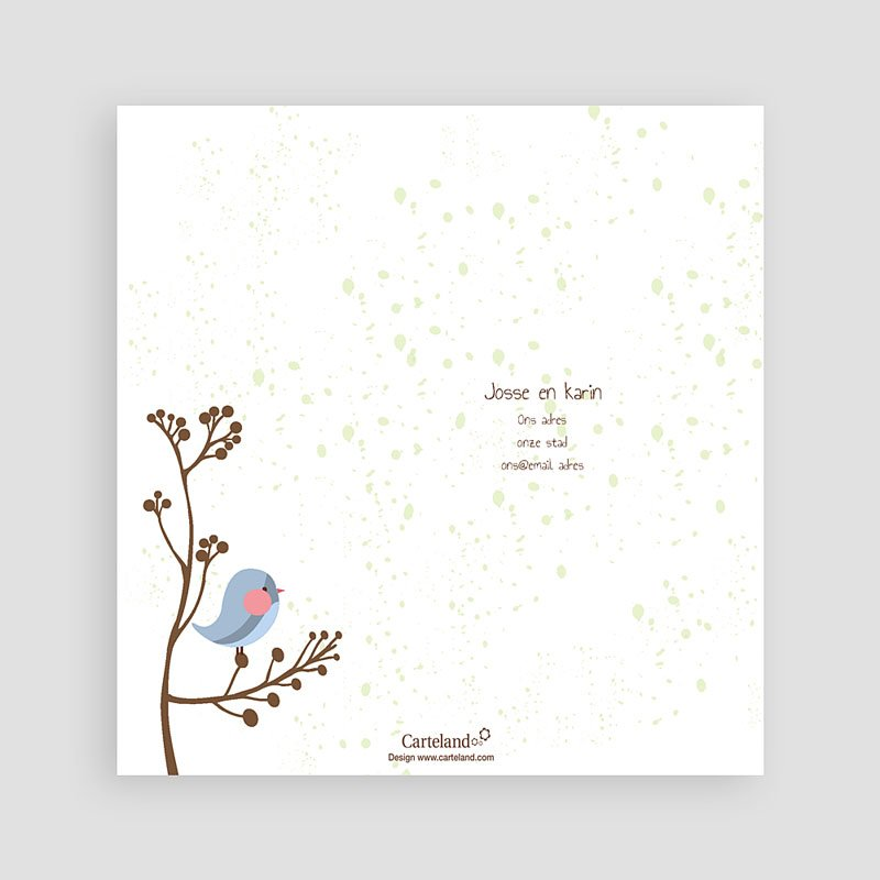 Bedankkaartje geboorte zoon - Fluitende vogel jongen 14248 thumb