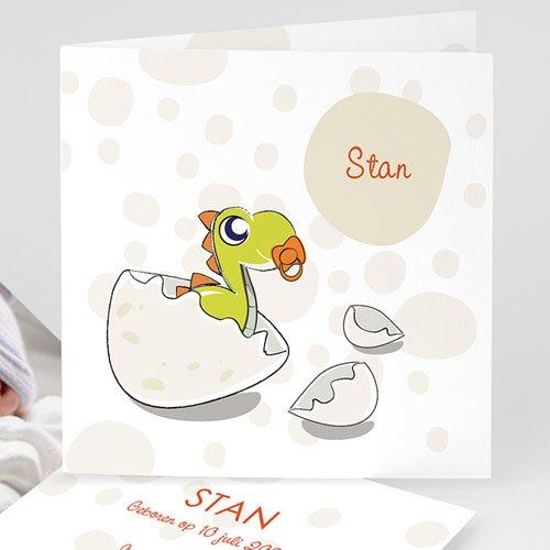Geboortekaartje jongen - Een Dino van een baby 14263 thumb