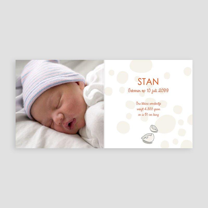 Geboortekaartje jongen - Een Dino van een baby 14264 thumb
